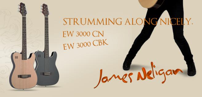 akustické kytary Stagg